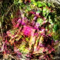 http://www.x04x.com/files/gimgs/th-36_x04x_2016_Art_0007_Iwana_Pic_07_1600.jpg