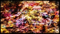 http://www.x04x.com/files/gimgs/th-52_x04x_2013_Art_Trashtonic_Collage_Panoramapiece05_1600.jpg