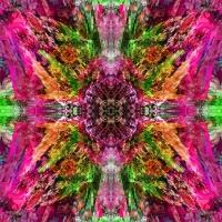 http://www.x04x.com/files/gimgs/th-53_x04x_2014_Art_Trashtonic_Collage_Random_Fuckit_04_1600.jpg